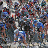 Martinez Bay Front Criterium : 4 galleries with 161 photos