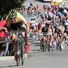 Metromint Giro di San Francisco : 2 galleries with 37 photos